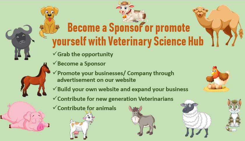 Become a Sponsor or Promote your businesses through Veterinary Science Hub