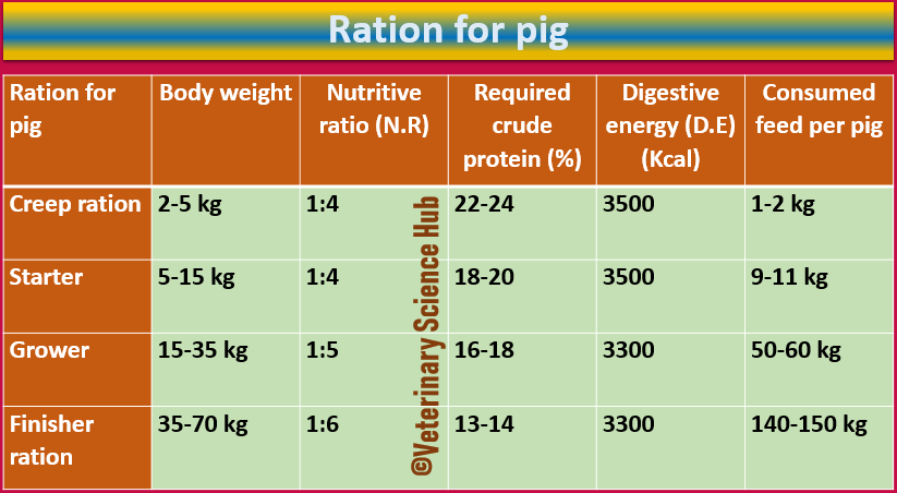 Points keep in mind which helps in before starting Pig farming