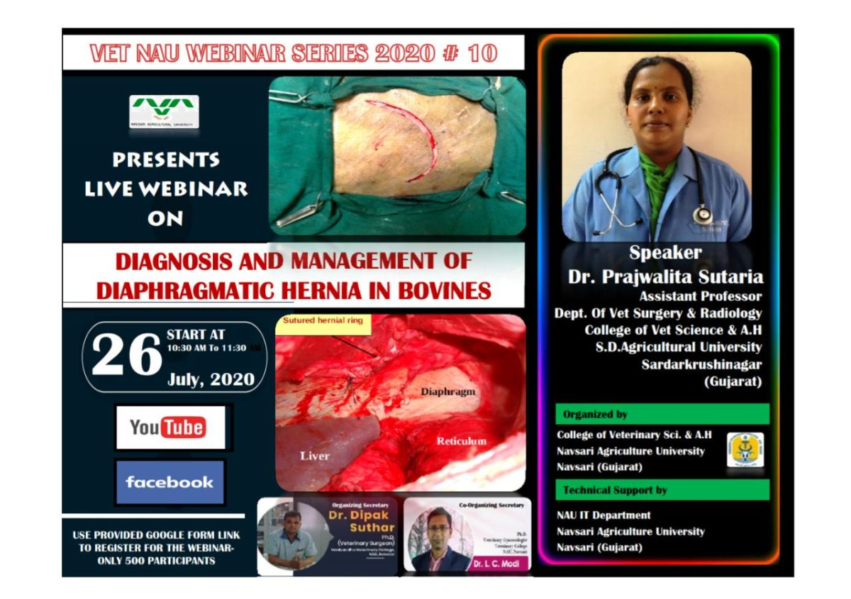 "Webinar on ""Diagnosis and management of diaphragmatic hernia in bovines"" By Dr. Prajwalita Sutaria"